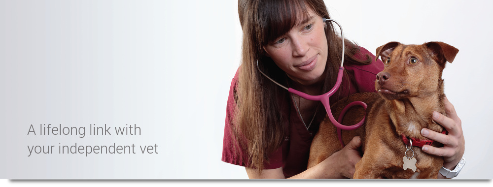 A lifelong link with your independent vet