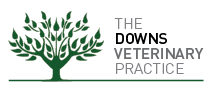 The Downs Veterinary Practice - Leading vets in Bristol, serving Westbury on Trym and Clifton